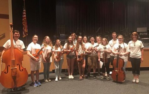 Orchestra to perform in concert Dec. 1