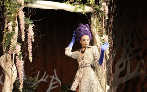 Tyrin Morris hosts Fierce Forest Fashion Show for senior project