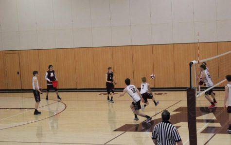 Alumni basketball game senior projects