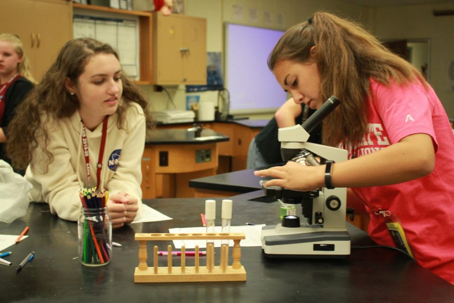 Fix it! Seniors Delaney Crider and Stevie Hoovie fix a slide in their seventh period microbiology class. Students interested in science will have new electives to choose next year.