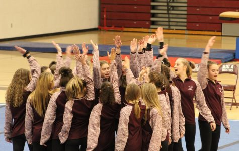 Gymnasts win home opener