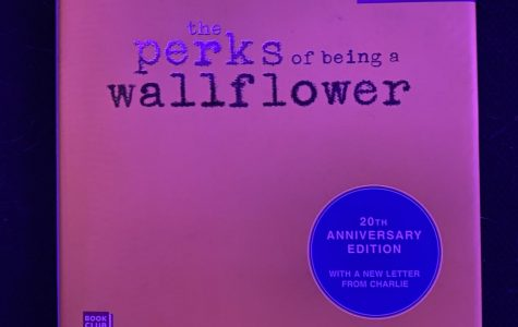 """The Perks of Being a Wallflower"" hooks even nonreaders"