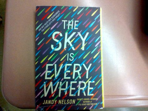 """The Sky is Everywhere"" by Jandy Nelson is a popular book for teens in Readers Workshop."
