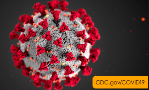 The Coronavirus, or Covid-19, was declared a pandemic by the World Health Organization on March 11.