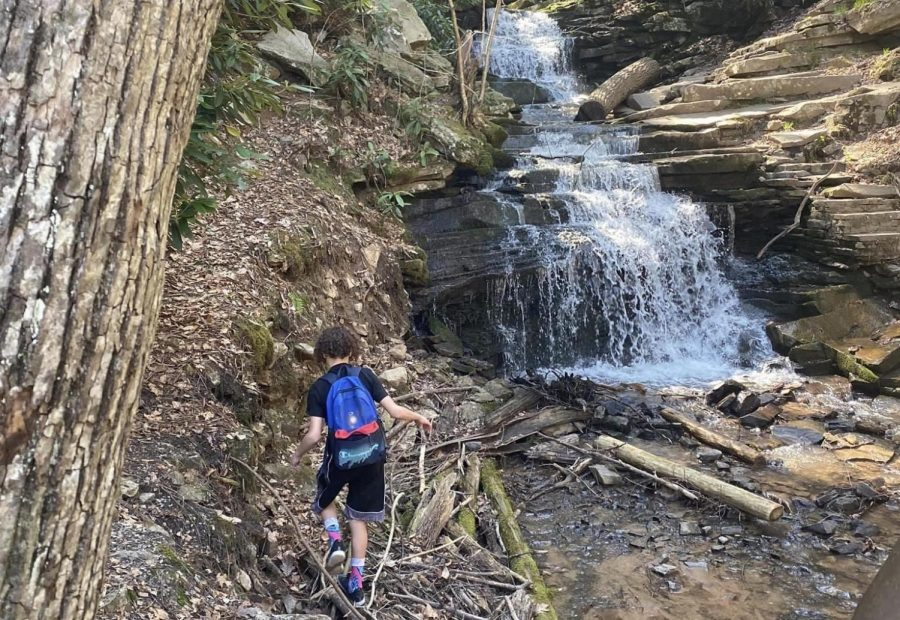 Bonus idea! Go hiking. Places around Altoona are 1000 steps, Canoe Creek, Tytoona Caves, and Trough Creek, where this photo was taken.