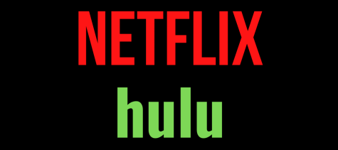 Netflix and Hulu are two different streaming websites that you can pay to watch multiple different shows and movies.