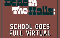 How do you feel about the school boards decision on being full virtual?