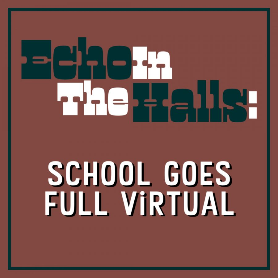 How do you feel about the school board's decision on being full virtual?