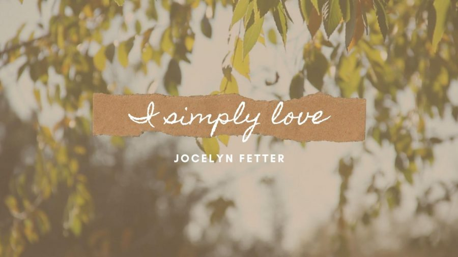 I+Simply+Love%3A+The+Minor+Things+in+Life