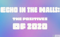 What was a positive outcome of 2020 for you?