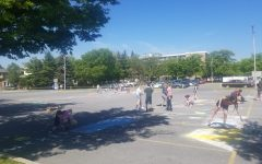 On May 19, seniors gathered in the student parking lot to decorate parking spaces. The event took place during senior week.