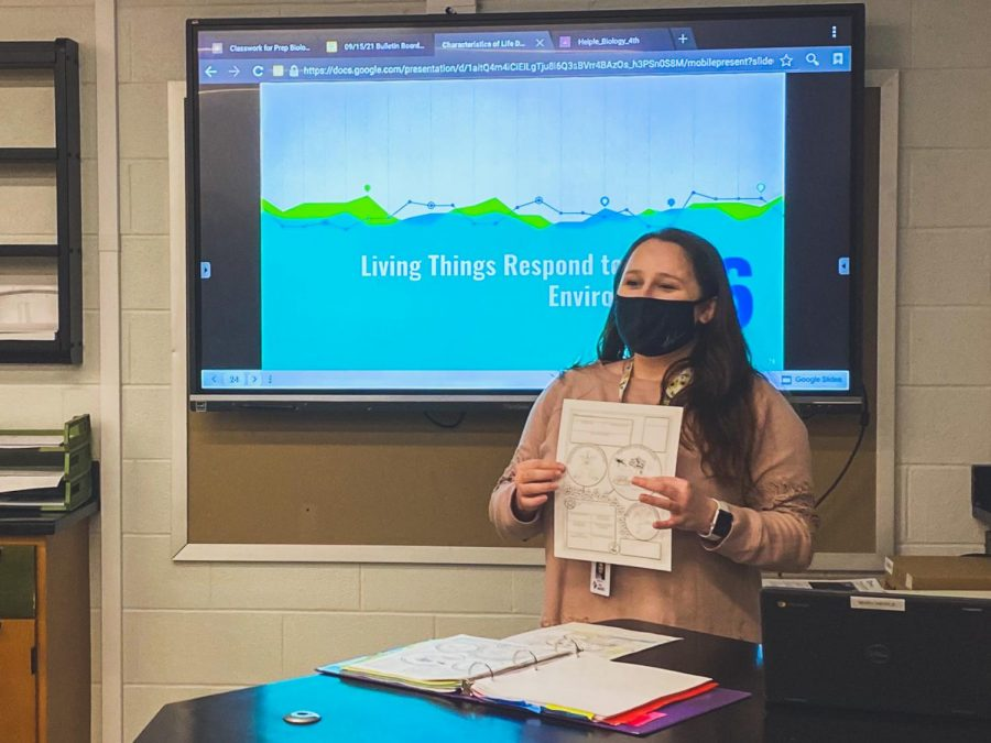 Lets present  Biology teacher Mary Heiple presents a slideshow about how living things react to the environment. She prepared this for the new lesson.
